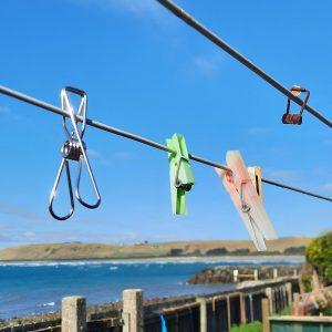 broken plastic pegs and stainless steel pegs on clothesline